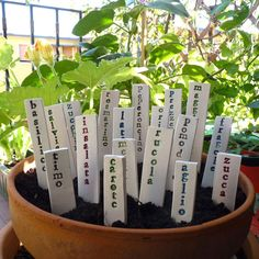 Forget plastic plant tags that always fade, use Ceramic Name Markers for your Garden!