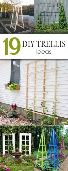 diy branch ladder for climbing vines or hanging small pots of ...