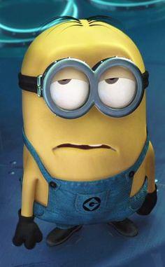 Top 40 Minions Quotes ~ Despicable Me. July Despicable Me July Minions, Gru, Margo, Edith, Agnes Cute Minions, Minions Despicable Me, My Minion, Minion Humor, Funny Minion, Minions Pics, Minion Stuff, It's Funny, Funny Jokes
