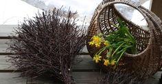 Ajattelin laittaa ohjeen risusiilin tekoon. Kerran risulintuja tehdessäni visioin omanlaiseni risusiilin. Siilin runko tehdään samaan tapaan... Plants, Plant, Planting, Planets