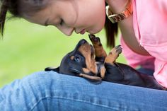 ♥-Is there anything cuter than a baby Doxie?