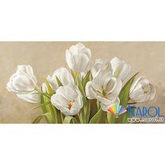 Stampa Tulipani bianchi