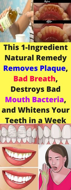 This 1-Ingredient Natural Remedy Removes Plaque, Bad Breath, Destroys Bad Mouth Bacteria, and Whitens Your Teeth in a Week – seeking habit