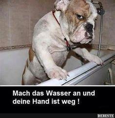 Mach das Wasser an und deine Hand ist weg! | Lustige Bilder, Sprüche, Witze, echt lustig