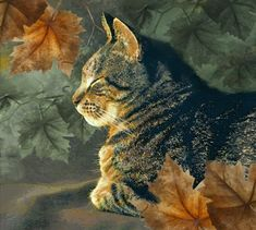 Cats by Artist Dianne Woods More #TabbyCat