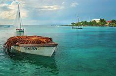 Bayahibe: República Dominicana  Fundado en 1847, es un perfecto escenario para la pesca, scuba-diving e incluso el uso de pequeños botes.