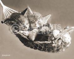 Mini Poster  Keith Kimberlin - hammock  art.no. 18559  50x40cm  € 3,99