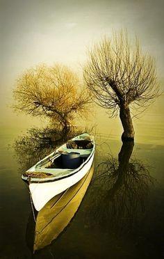 by Ahmet Utgan