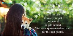 Love your pets but worried about vet bills? Get ‪#‎petinsurance‬ that pays vet bills in case your pet becomes ill or gets injured. Visit www.quotemeonline.co.uk for the best quotes. http://bit.ly/WePlV0