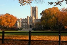 Fordham University in the fall. So pretty <3