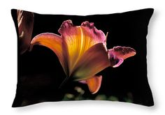 Sunlit Lily Throw Pillow ~ a beautiful sunlit daylily blooming in Salt Lake City's Red Butte Garden. Decorative throw pillows available in multiple sizes.   www.ronablack.com
