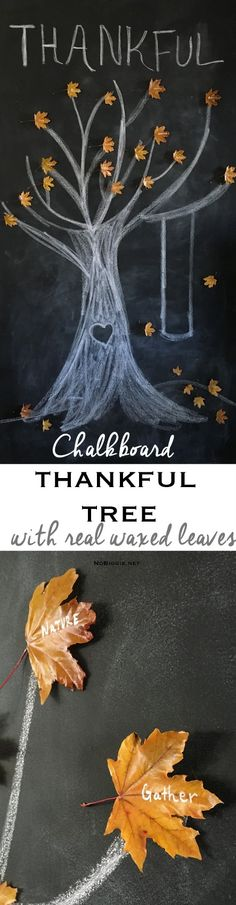 Thankful Tree with waxed leaves chalkboard thankful tree Chalkboard Doodles, Chalkboard Art Quotes, Blackboard Art, Chalkboard Writing, Chalkboard Drawings, Chalkboard Lettering, Chalkboard Designs, Chalk Drawings, Chalkboard Ideas