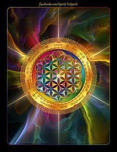Flower of Life #Sacred Geometry