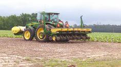 7630 & bean planter. John Deere Equipment, Planting, Farming, Tractors, Plants
