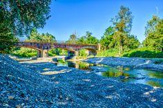 Le rive del Mellea (Mellea's banks) - Il torrente che bagna Savigliano, una domenica mattina di Luglio