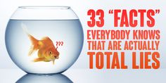 "33 ""Facts"" Everybody Knows That Are Actually Total Lies"