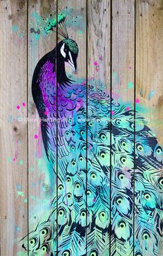 Peacock stencil art painting by Maria Harding on reclaimed wood