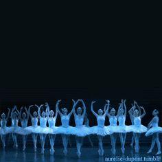 aurelie-dupont:  Paris Opera corps in Swan Lake Amazing…