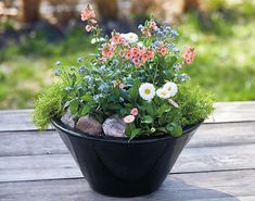 Tabletop Planter Ideas: These tabletop planters may be small, but their colorful flowers and foliage can make a big impact on your outdoor living area. Shade Plants Container, Container Flowers, Container Gardening, Best Plants For Shade, Cool Plants, Kalanchoe Blossfeldiana, Plants Under Trees, Globe Amaranth, Early Spring Flowers