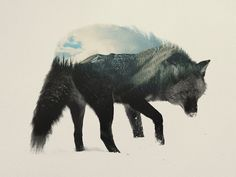 Whimsical Double Exposure Images Fuse Animals With Beautiful Natural Landscapes - DesignTAXI.com