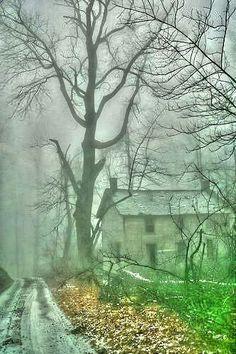 The mist. ..
