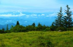Andrew's Bald near Clingman's Dome in the Great Smoky Mountains National Park