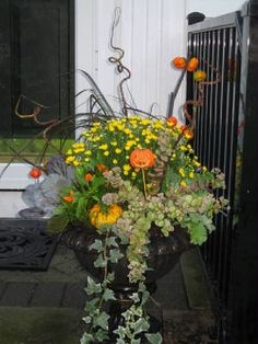 Pumpkins and fall accents added to an outdoor planter. I love this!