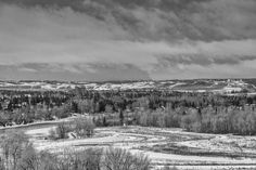 Black and White Canadian Nature, Calgary, Black And White, Landscape, Park, Silver, Outdoor, Image, Outdoors