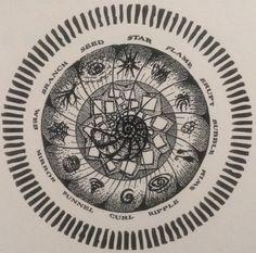 Dreamcatcher's Wheel by Marian