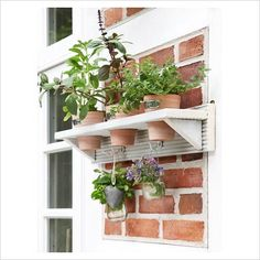 DIY flowerpot shelf - Finished shelf with potted herbs