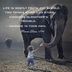 """""""Life is mostly froth and bubble. Two things stand like stone - kindness in another's trouble and courage in your own."""" - Princess Diana quote"""