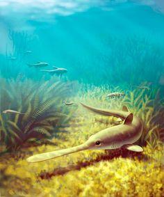 http://cdn4.sci-news.com/images/enlarge/image_1678_1e-Bandringa-shark.jpg