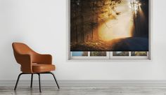 Forest at sunset I #rollerblinds #printed #DIY #windowtreatments #windowdecor #nature #forest #artwork #light #art #prints #interiordesign #home #decor @decoshaker