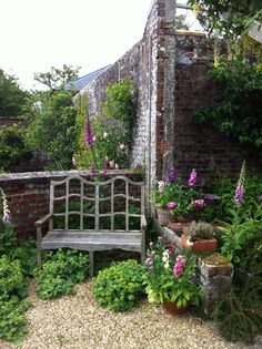 Beautiful foxgloves and stocks in the formal garden