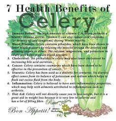 Celery is a staple in this house hold. Jackson and Me eat it all the time. A bunch usually lasts us about a day....depending on how yummo it is. I am super particular about my celery too. The lighter ...the better!!!! Mmm Mm!