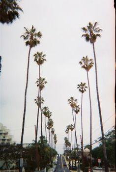West Coast.