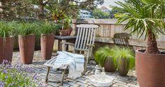 Mooie hoge potten met grassen perfect als scheiding aan het terras te plaatsen