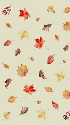 All things shabby and beautiful cute wallpapers, cute backgrounds, phone backgrounds, wallpaper backgrounds Cute Fall Wallpaper, Iphone Wallpaper Fall, Halloween Wallpaper Iphone, Holiday Wallpaper, Wallpaper For Your Phone, Aesthetic Iphone Wallpaper, Aesthetic Wallpapers, Trendy Wallpaper, Cute Wallpaper Backgrounds