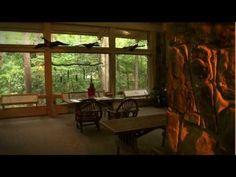 VIDEO: Alabama Wildlife Center Welcome