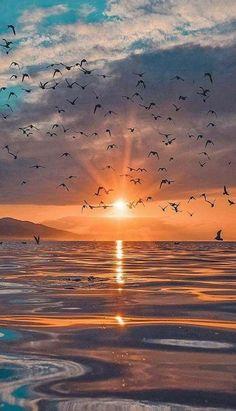 2018-09-28_09-57-46 Beautiful Nature Wallpaper, Beautiful Landscapes, Sunset Photography, Landscape Photography, Food Photography, Sunset Wallpaper, Scenery Wallpaper, Sky Aesthetic, Beautiful Sunrise