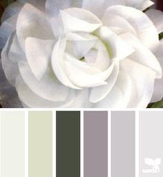 color palette - ranunculus tones