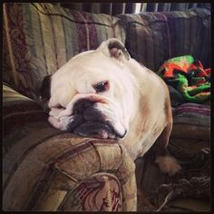 """""""It's okay to feel a little droopy."""" 