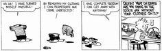 Calvin and Hobbes Daily: Photo #Comics