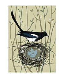 Magpie's Treasure Screenprint by Sally Elford Down To Earth Cards Wild Creatures, Silk Screen Printing, Printing Press, Little Birds, Freelance Illustrator, Print Artist, Magpie, Beautiful Paintings, Printmaking