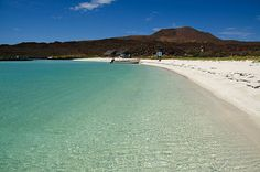 The Islands of Loreto: The Galapagos of North America