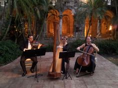Florida Wedding Venue:The Ancient Spanish Monastery in Miami is such a romantic location for a wedding and reception with The Elegant Harp String Ensemble with Harpist Esther Underhay @SpanishMonastery @elegantharp #Floidaharpist #Miamiharpist #StringQuartet #weddingharpist #lavish