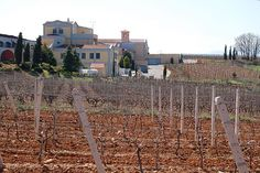 Macedonia - Wines - Kostas Lazaridis Winery, Drama Macedonia  #Macedonian #wines #Greek wineries #european #vineyards #Macedonia #Greece