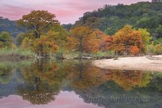 Pedernales Falls State Park comes alive each Autumn and displays amazing colors of fall in the Texas Hill Country. For more Texas images, please visit http://www.imagesfromtexas.com/-/galleries/texas-hill-country-images-and-photos