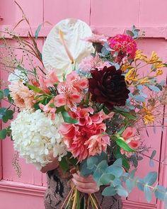 #COUCOUCESTNOUS ✌cette semaine dans vos bouquets livrés à vélo  Maxi anthurium champagne (), hydrengea paniculata, dahlia fauve (), dahlia noir (), patte de kangourou jaune, alstro des champs rose, chrysanthème peach, pompon d'autonomne rose, crête de coq fushia, cosmos, greenbell, limonium, oeillet peach, graminées, grevillea, eucalyptus • dispo en 3 tailles sur le shop www.pampa.paris et à emporter depuis le 18 rue Sambre-et-Meuse Paris 10e