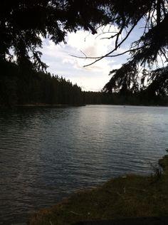 Cypress lake shot I took